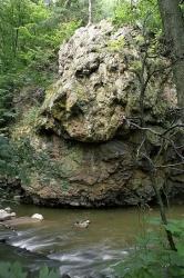 Skály údolí Rokytné